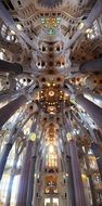 tall columns at beautiful ceiling in sagrada familia cathedral, spain, barcelona