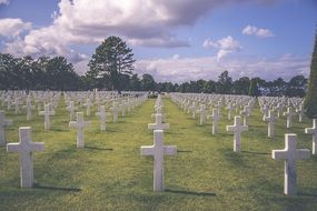 Military graveyard in honor of fallen soldiers