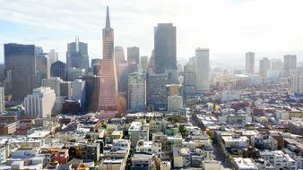 city of San Francisco from a height