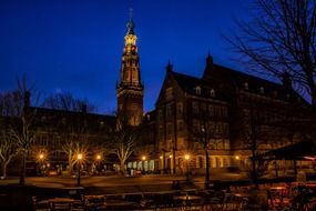suffer city holland beautiful night blue view