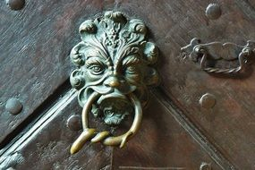 antique brass door handle and doorknocker