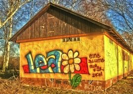 colorful graffiti with flower on yellow facade