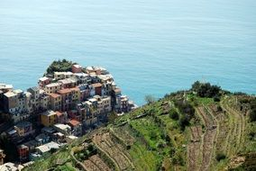 top view of houses on cliff at sea, italy, liguria, cinque terre