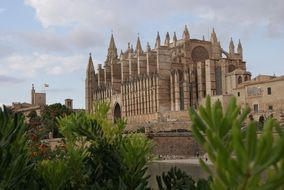 gothic cathedral of Palma de Mallorca at sky, Spain