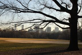 view of city from central park at winter, usa, manhattan, nyc