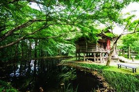 mysterious mountain japan natural wood house