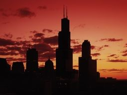 chicago skyscrappers during sundown