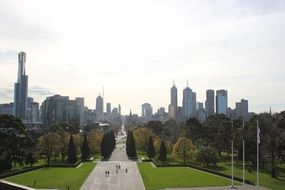 melbourn city skyline boulevard trees grass footway