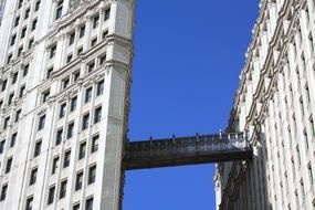 sky bridge of wrigley building skyscraper, usa, illinois, chicago