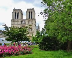 people in park at notre dame cathedral, france, paris