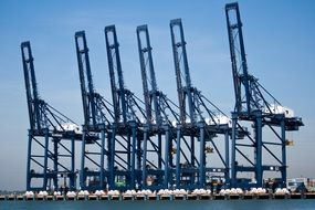 blue cranes in container port, uk, england, felixstowe