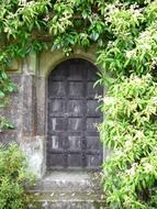 closed arched door in medieval wall