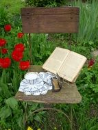 vintage still life, open book and glasses on old chair in garden