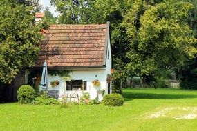 small cottage with tile roof in garden