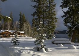 scenic winter landscape, huts in snowy forest at canim lake, canada, british columbia