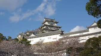 roof of Himeji Castle above trees, japan