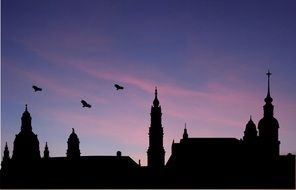 birds above church, silhouettes at evening sky