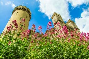 england tower arundel castle flowers beautiful sky day view