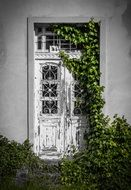 Old braky white door