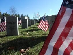 american flags at gravestones on soldier cemetery