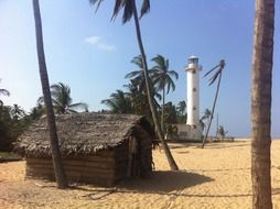 tropical landscape, hut on beach beneath palm trees and lighthouse, sri lanka, oluvil