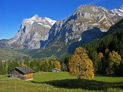 scenery autumn mountain landscape, switzerland, bernese