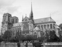 notre dame cathedral, black and white, france, paris