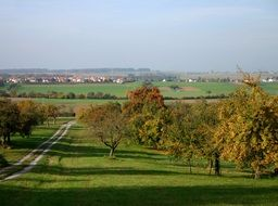 fruit trees in orchard, autumn countryside, germany, baden württemberg