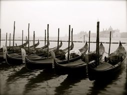 gondolas in row at pier, italy, venice