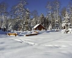 wooden ranch building at snowy forest