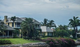 villas among palm trees under cloudy sky, usa, florida