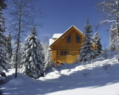 log house on hill side in forest at winter