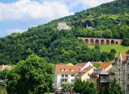 castle on green forested mountain side above old town, germany, heidelberg