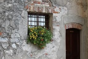 potted flowers on facade at monastery window, switzerland