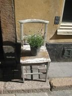 pot with herbs on shabby chair at facade, decoration