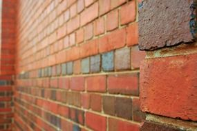 red bricks in rows, wall perspective