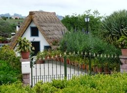beautiful village house with thatched roof in garden, portugal, madeira