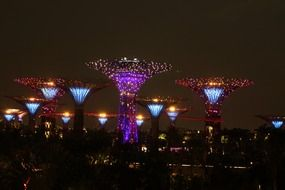 colorful illuminated giant trees at night sky, singapore, gardens by the bay