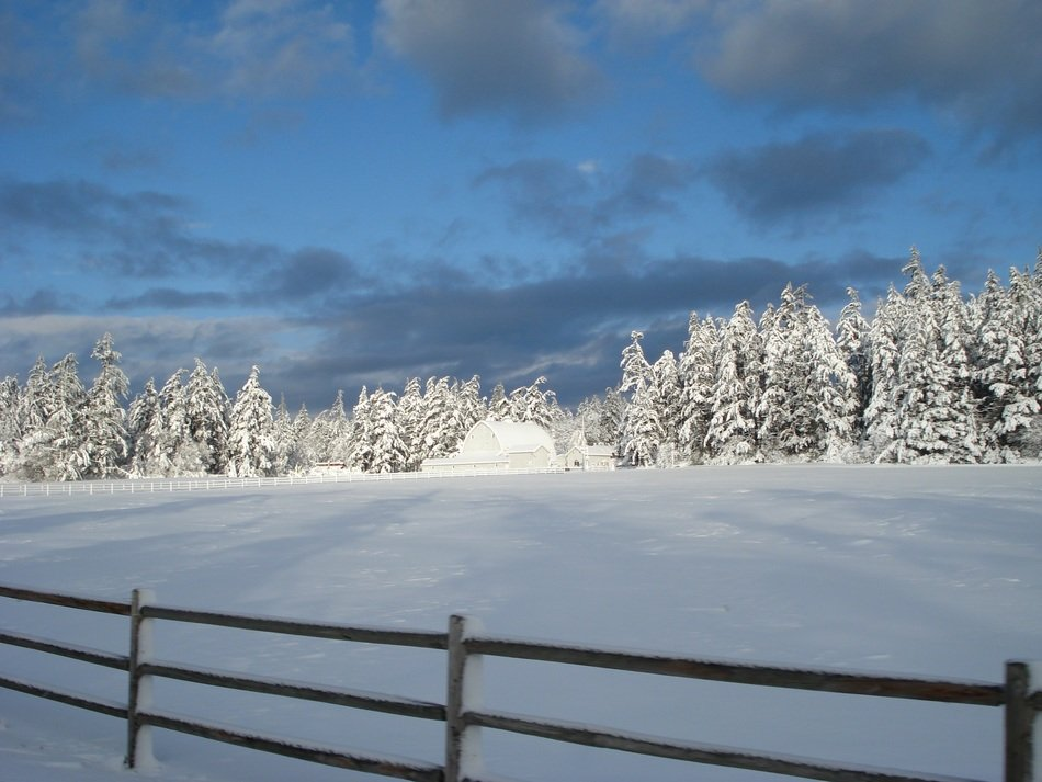 scenic snowy winter landscape, ranch at forest