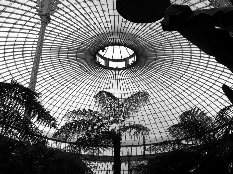round glass ceiling of greenhouse