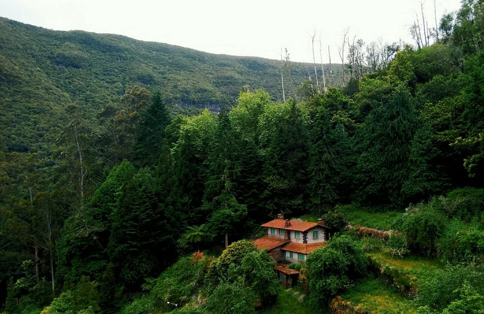 picturesque house on mountain side at forest in summer landscape