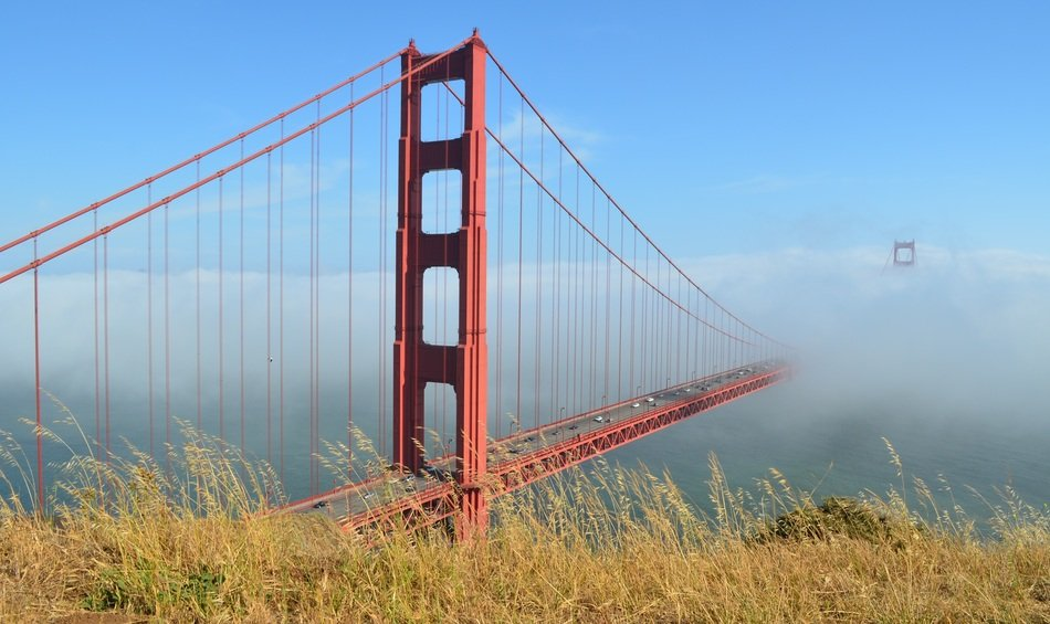 golden gate bridge disappears in the fog