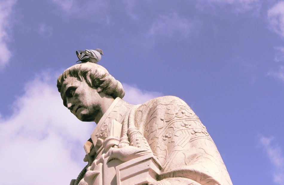 dove on head of old statue, portugal, lisbon, belem