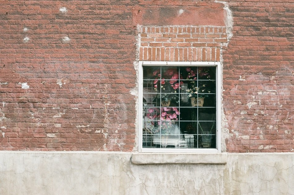 grated window with potted flowers on red brick wall