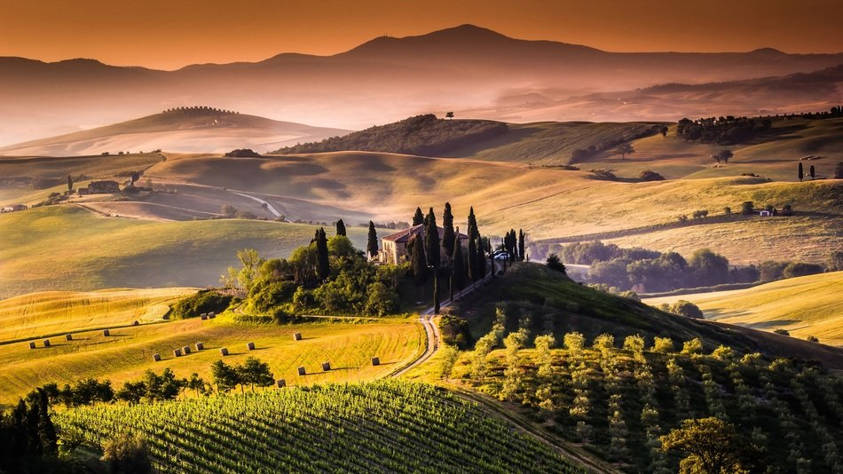 gorgeous countryside landscape with vineyard on hill, italy, tuscany