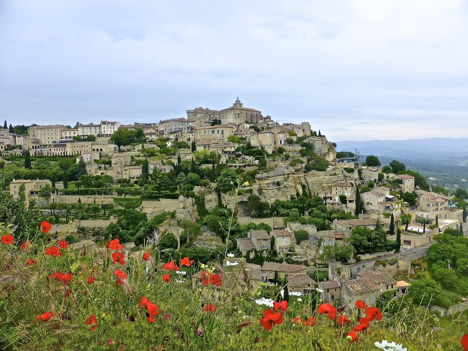 blooming flowers at scenic village, france, provence, gordes