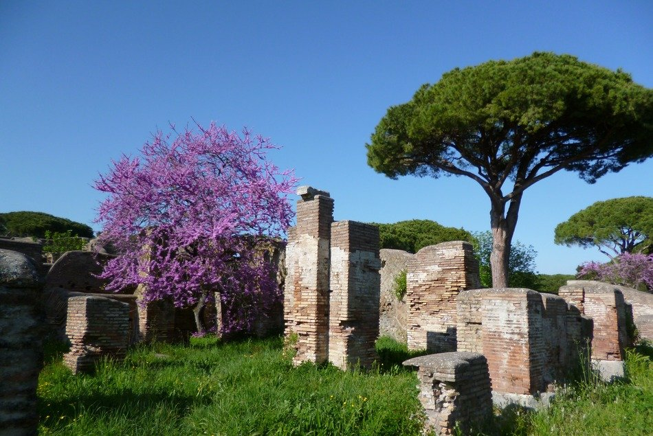 ancient roman ruins in spring landscape, italy, ostia antica