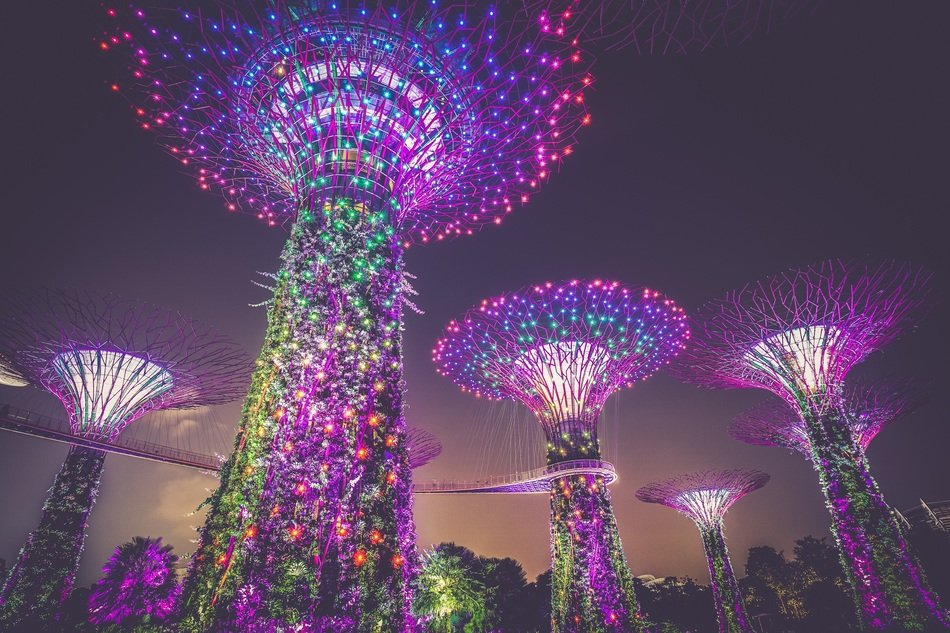 colorful illuminated artificial trees, bottom view