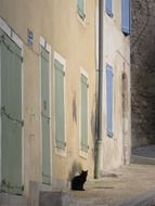 black cat sits on street at old bilding, france, provence