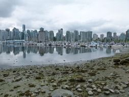 city skyline with boats at harbour, canada, british columbia, vancouver
